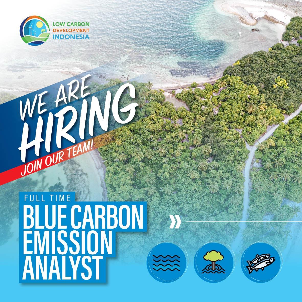 Blue Carbon Emission Analyst